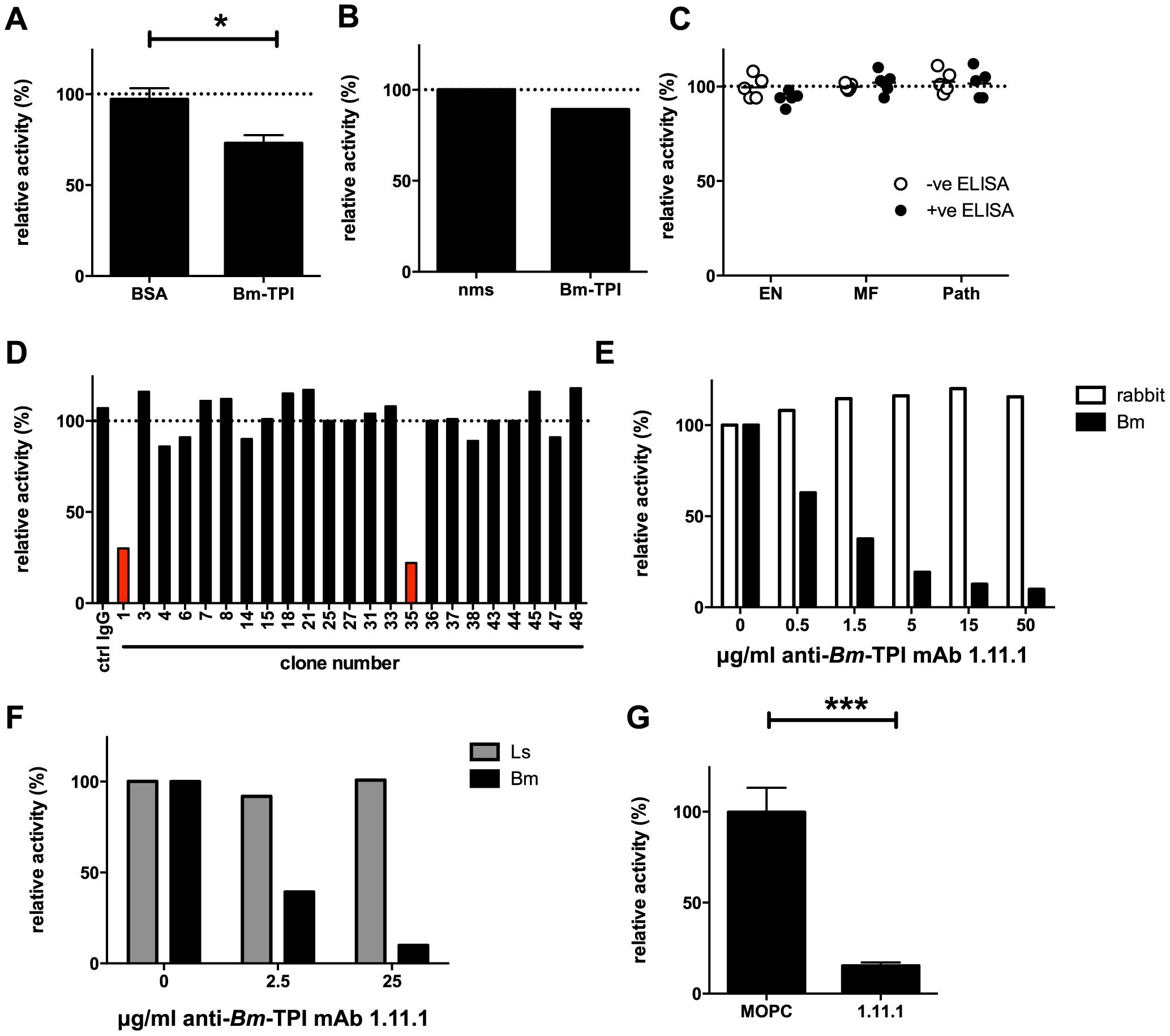 Generation of neutralizing antibodies to <i>Bm</i>-TPI.