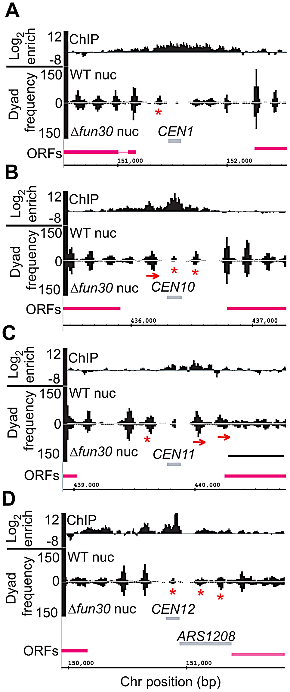 Fun30 is required for normal <i>CEN</i>-flanking nucleosome positioning and/or <i>CEN</i> core particle structure.
