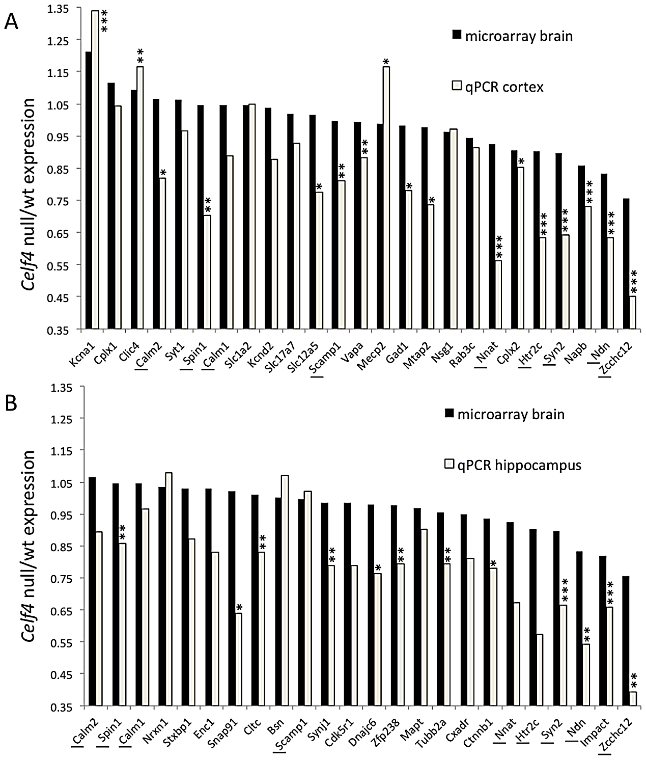 Validation of CELF4 genotype-dependent abundance changes of select CELF4 target mRNAs.