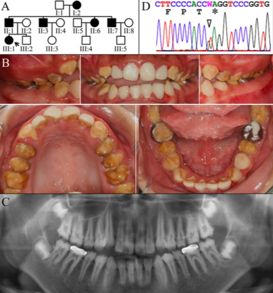 Figure 2. 