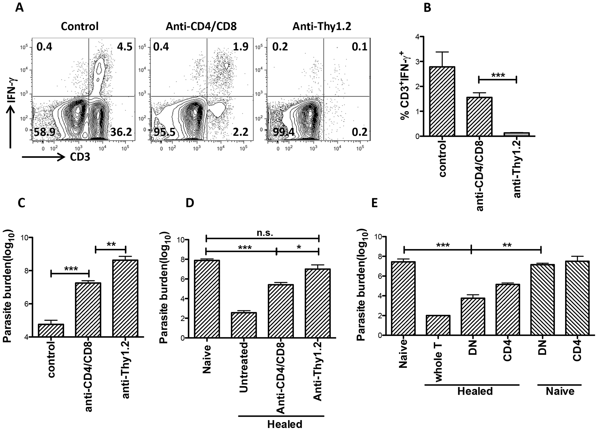 DN T cells contribute to optimal primary and secondary immunity against <i>L. major</i> infection.