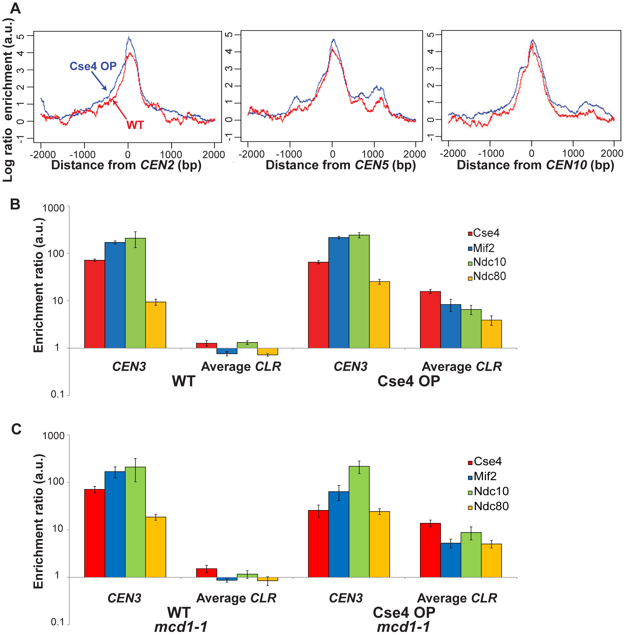 Quantitation of protein binding in Cse4 OP strains.