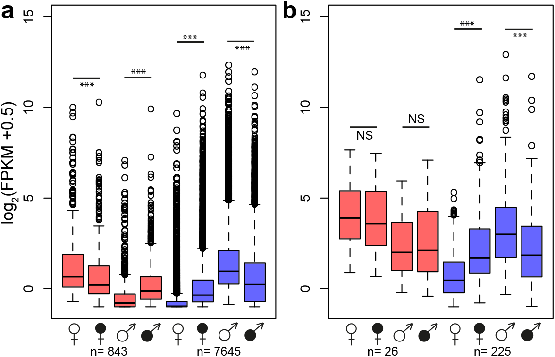 Changes in gene expression intensity of genes with sex-biased expression in healthy <i>S</i>. <i>latifolia</i> following <i>Microbotryum</i> infection.