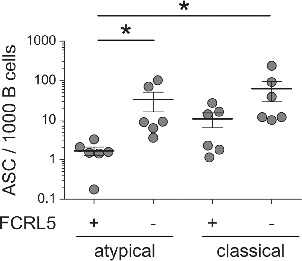 Recall antibody secretion by different B cell subsets.