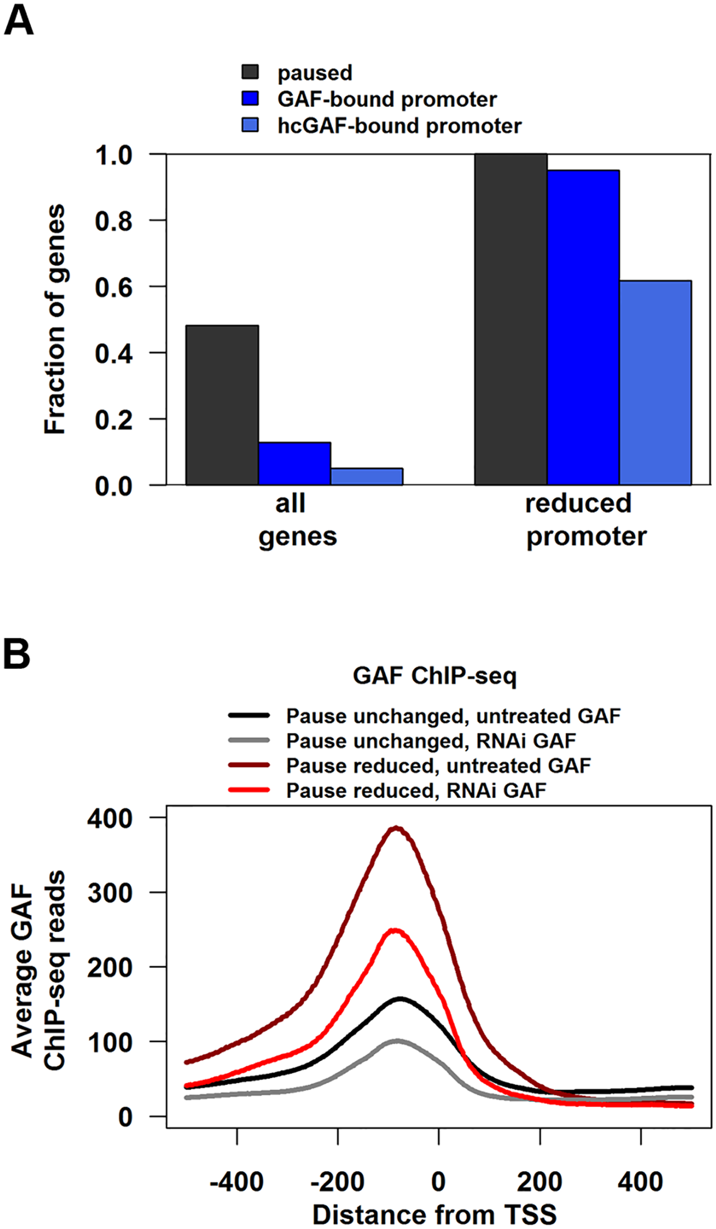 Genes with reduced pausing in GAF-RNAi are enriched for GAF-bound promoters.