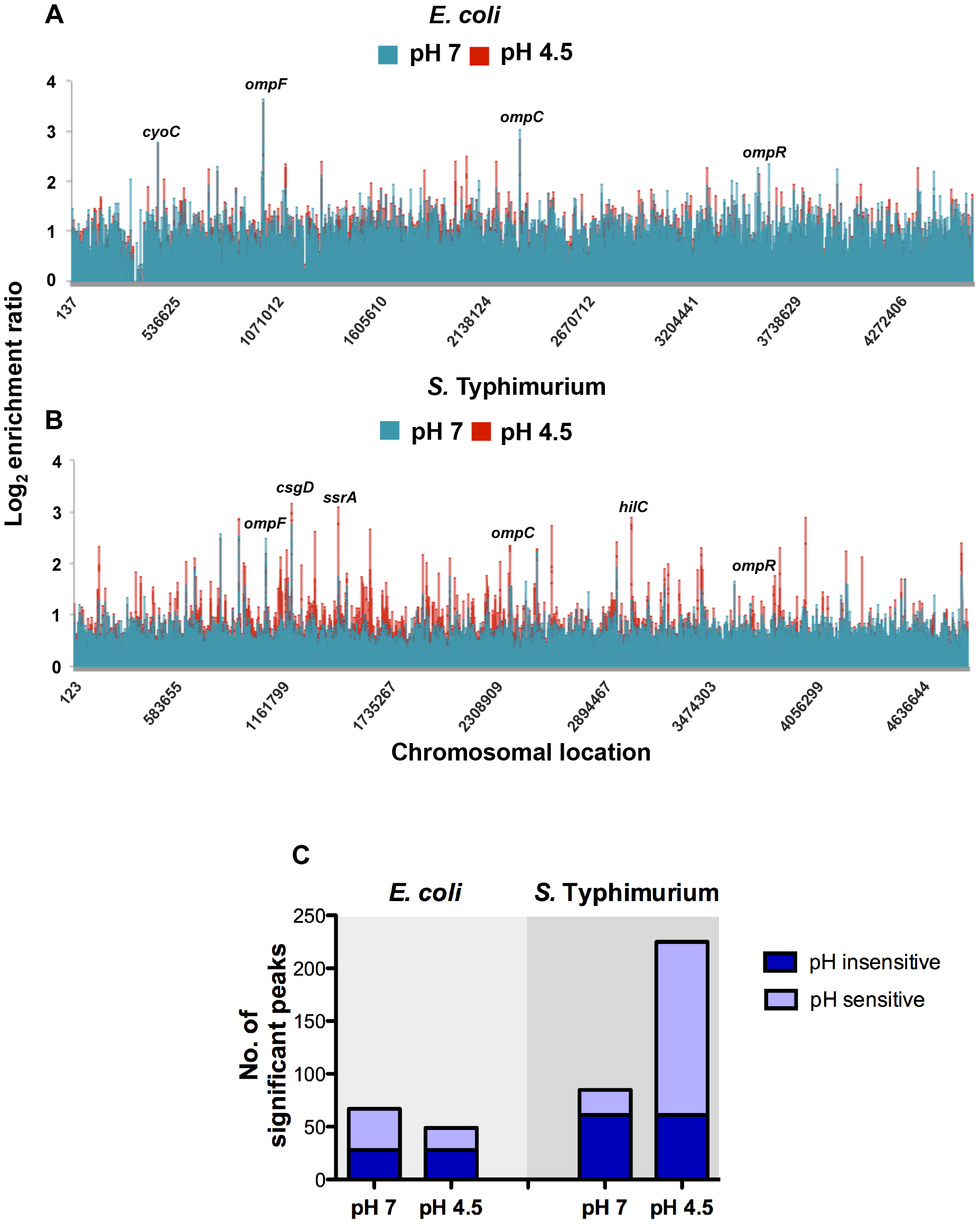Genome-wide distribution of OmpR in <i>E. coli</i> and <i>S.</i> Typhimurium.
