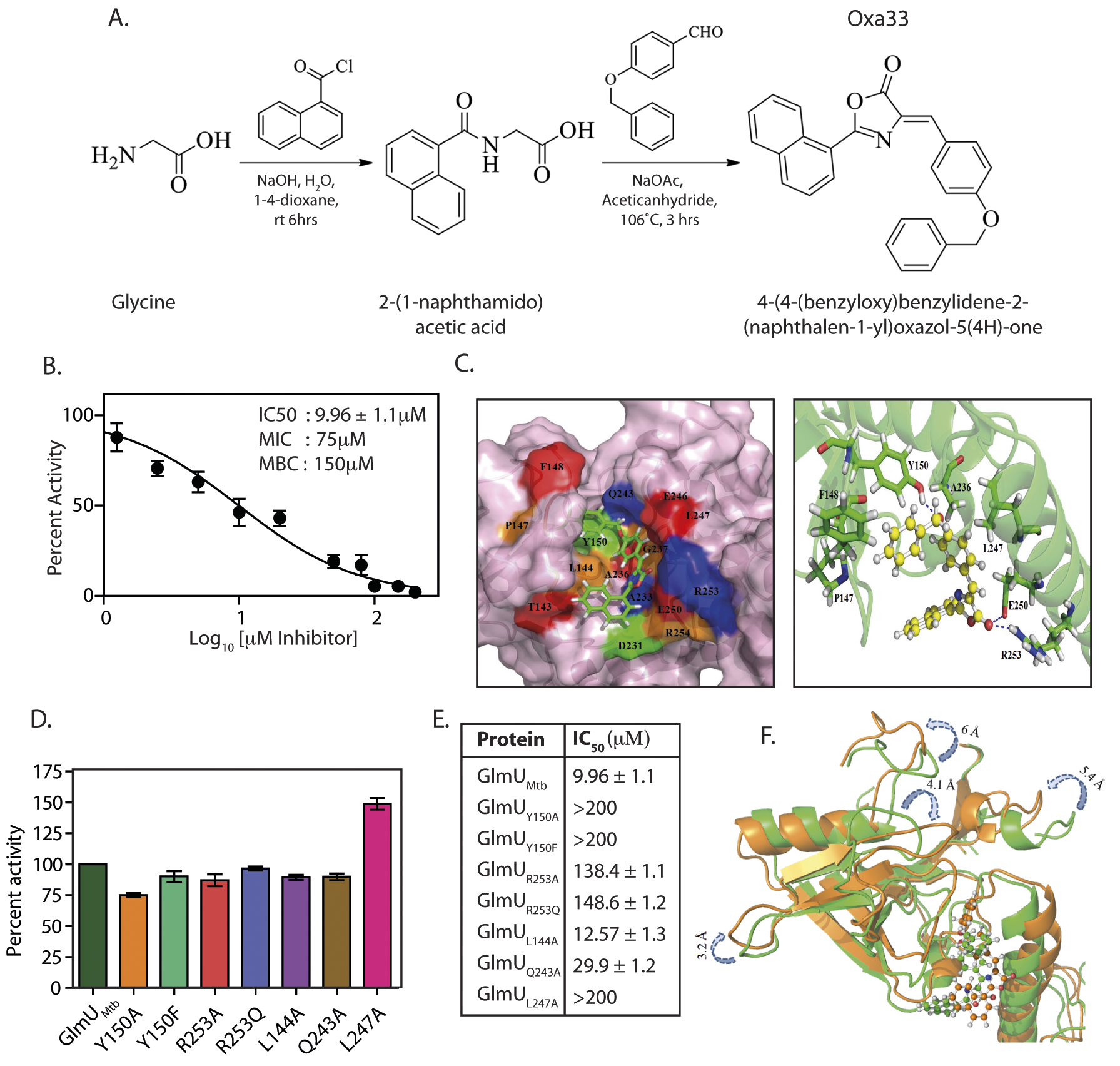 Oxa33, a novel inhibitor against GlmU<sub>Mtb</sub> binds at allosteric site of uridyltransferase domain.