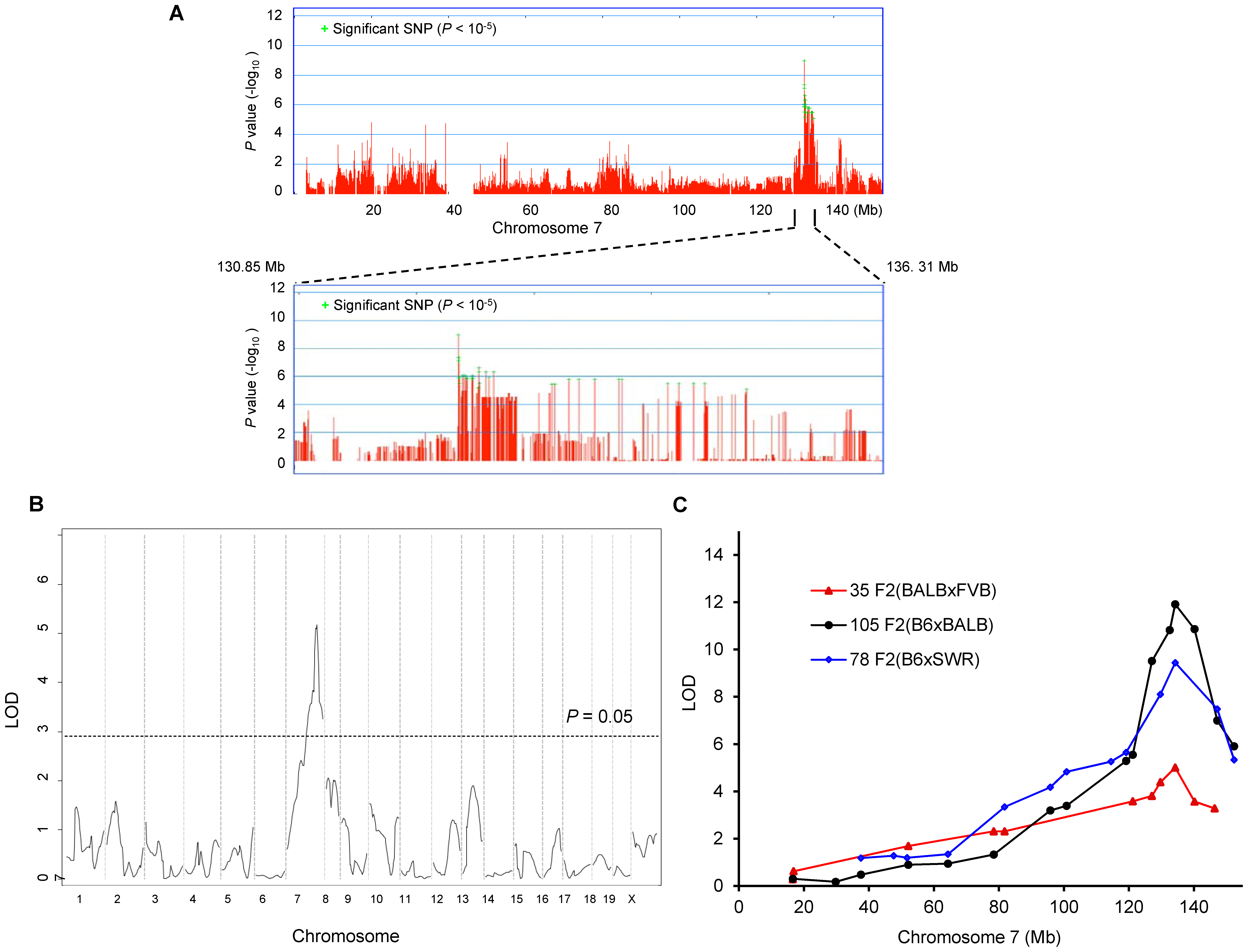 <i>Civq1</i> on chromosome 7 re-identified in intercrosses between multiple mouse strains.