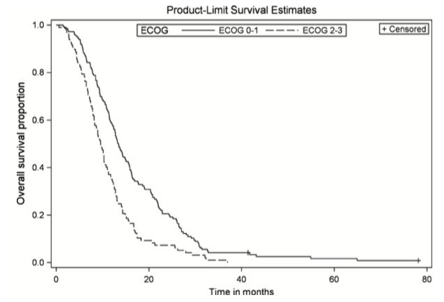 Figure 1. Overall survival by ECOG performance status. Kaplan–Meier curve of LAPC patients with ECOG PS 0–1 (n = 146) versus ECOG PS 2–3 (n = 98). P = 0.0002, HR 1.69 (95% CI 1.28–2.23).