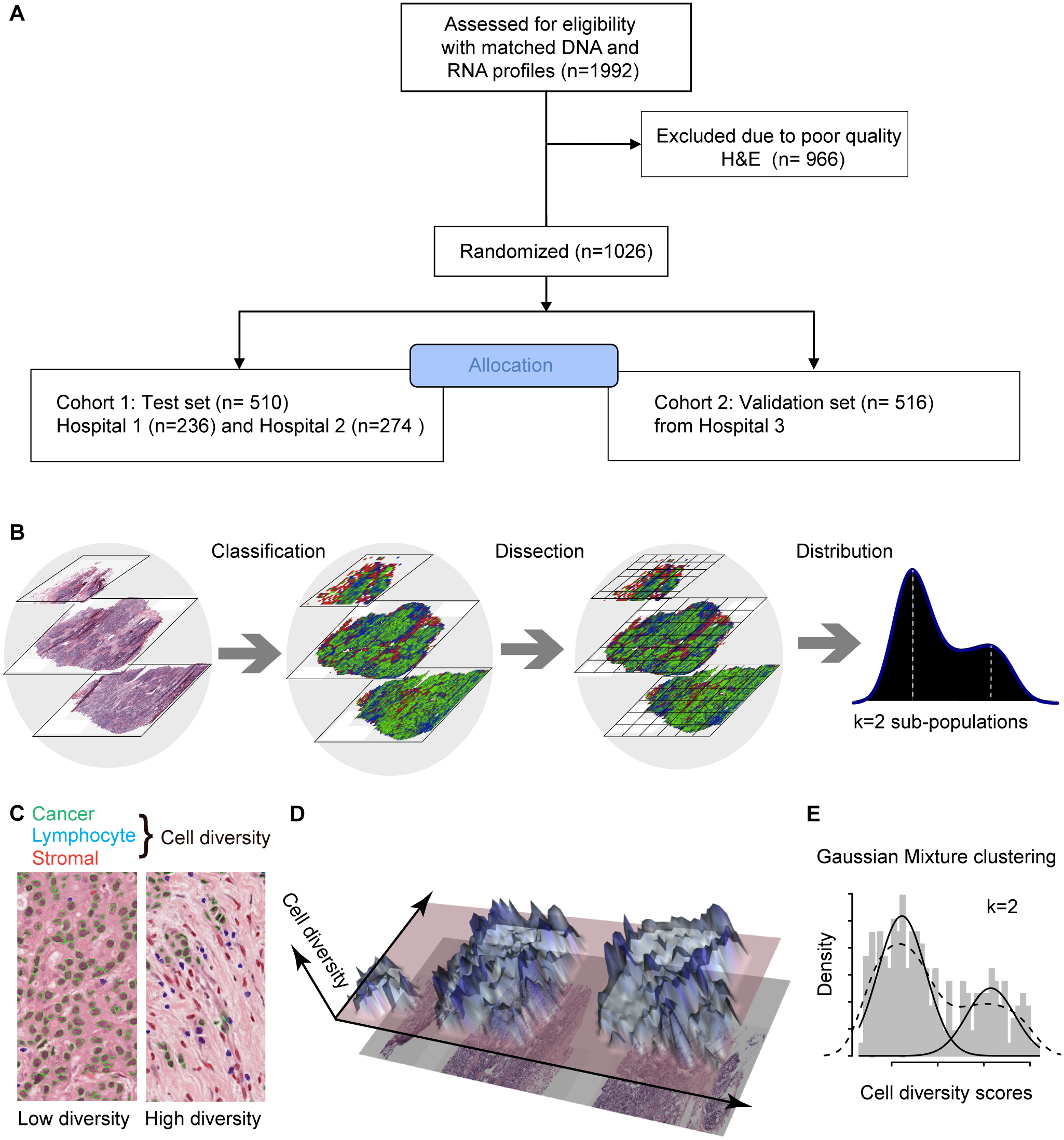 In silico tumor dissection pipeline for quantifying spatial diversity in the tumor ecosystem.