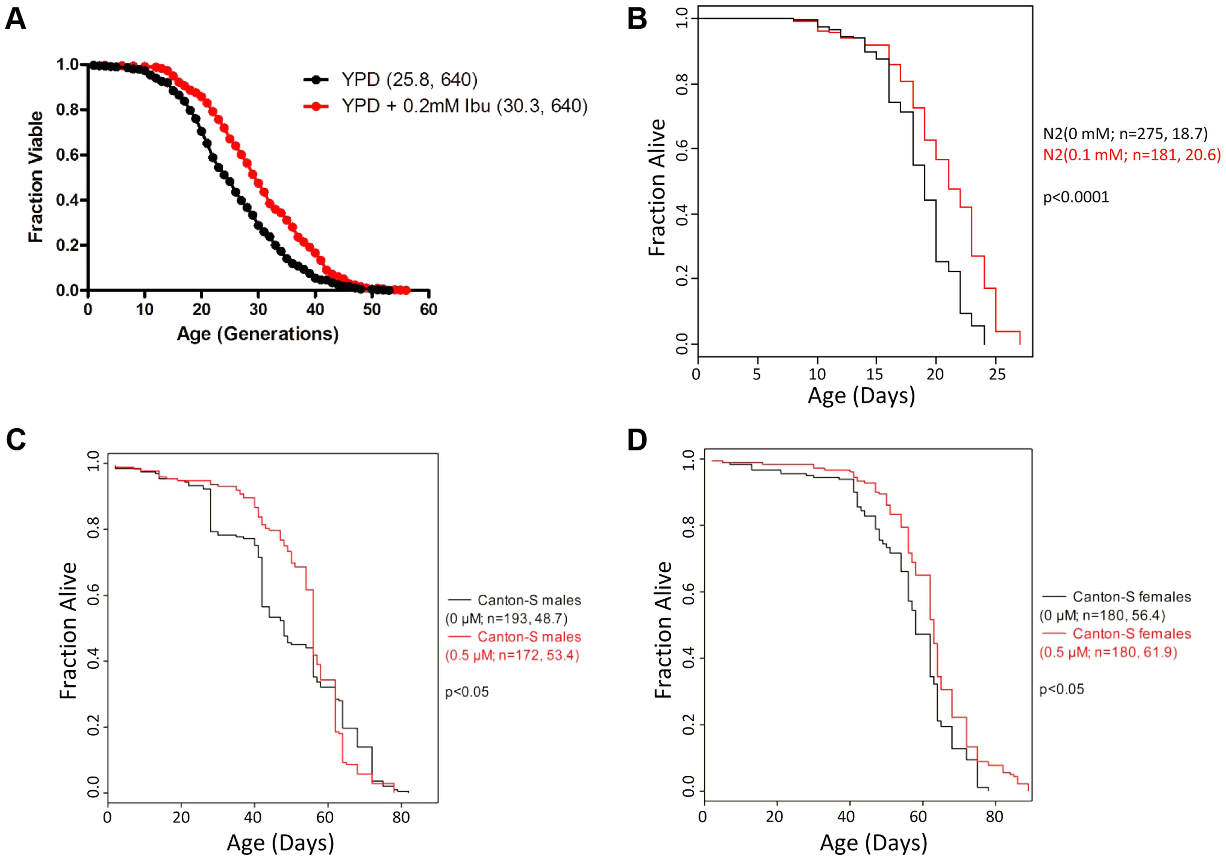 Ibuprofen extends the lifespan of <i>S. cerevisiae</i>, <i>C. elegans</i> and <i>D. melanogaster</i>.