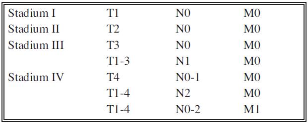 Klinické stadium renálního karcinomu podle TNM Tab. 2. Clinical stage of a renal Carcinoma according to the TNM classification