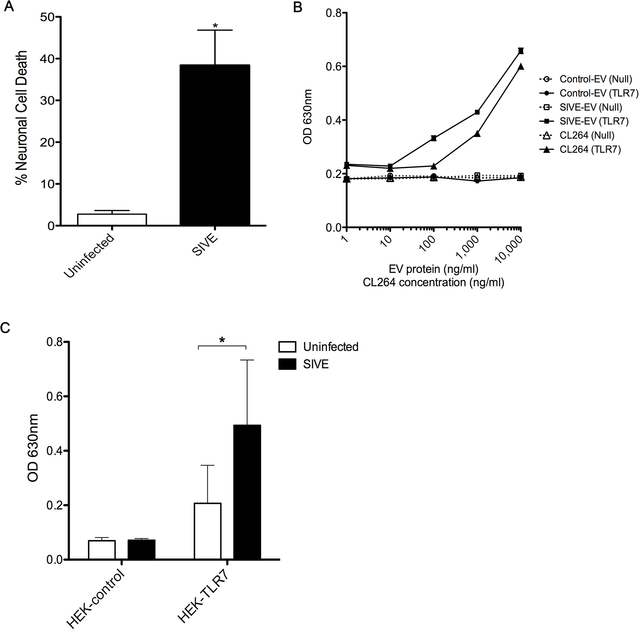 EVs from SIVE brains can elicit neurotoxicity and can activate TLR7 pathway.