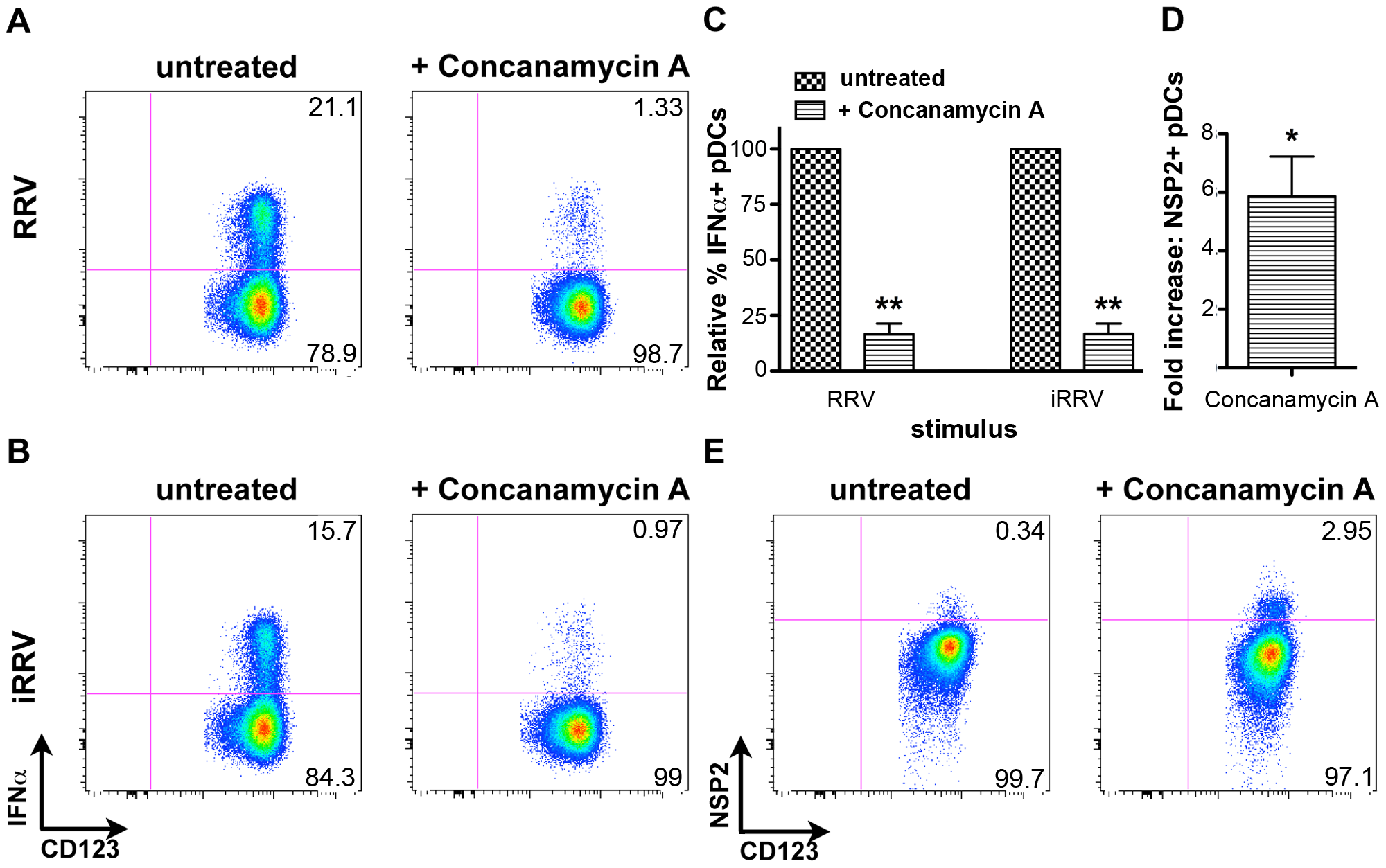The effects of concanamycin A on IFNα induction and NSP2 expression.