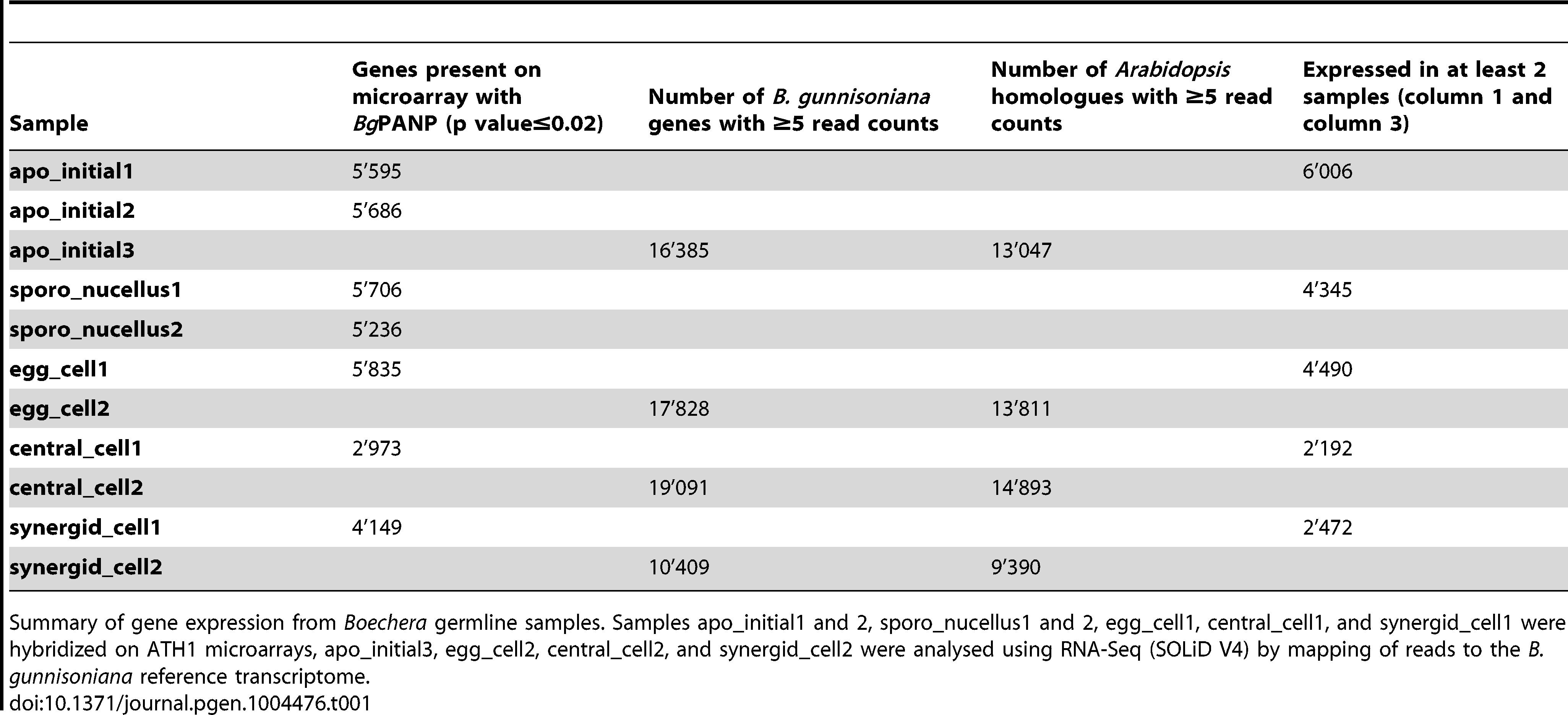 Transcriptome analysis of 11 samples from apomictic <i>Boechera</i> isolated by LAM.