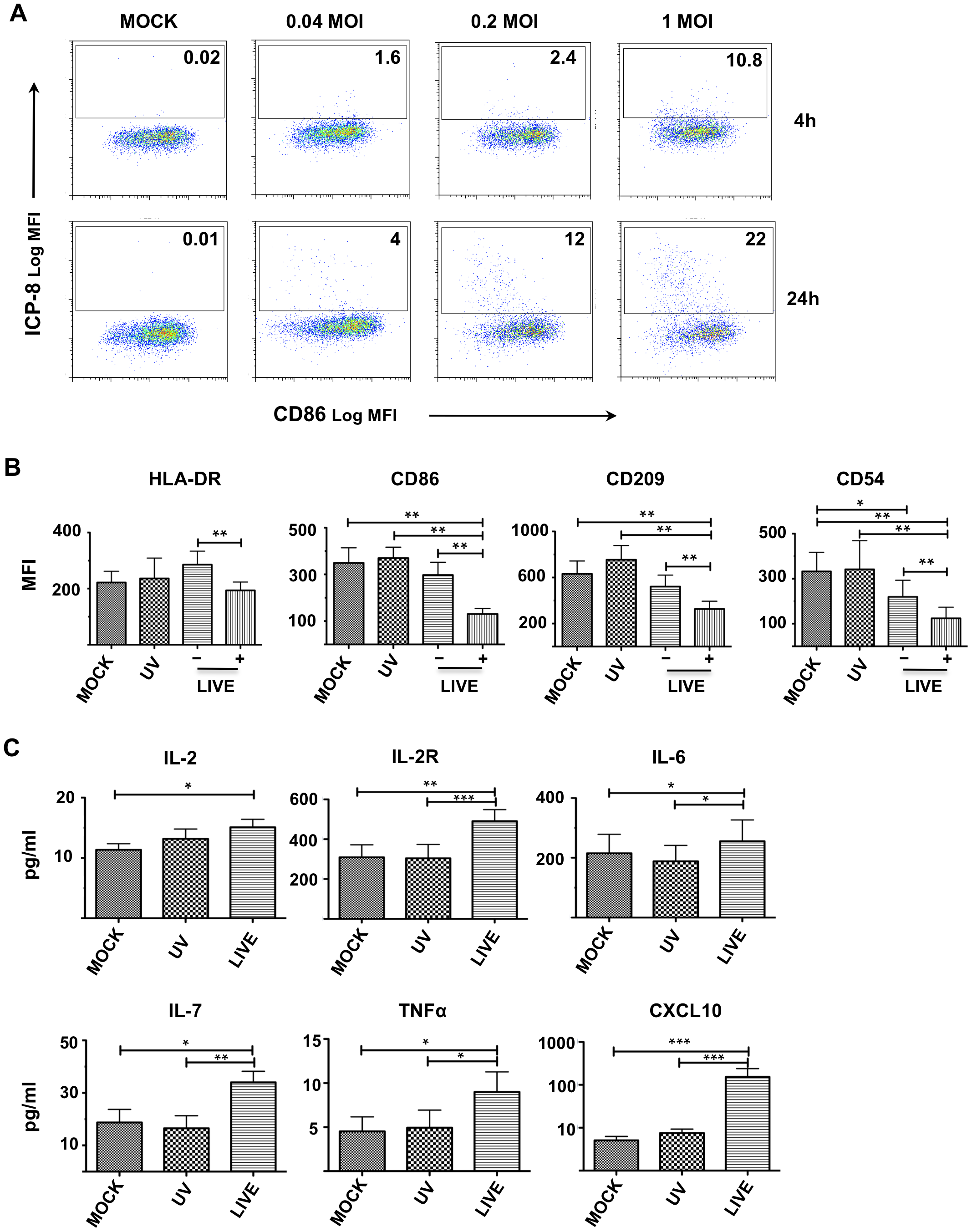 Low level HSV-2 infection modulates DC function.