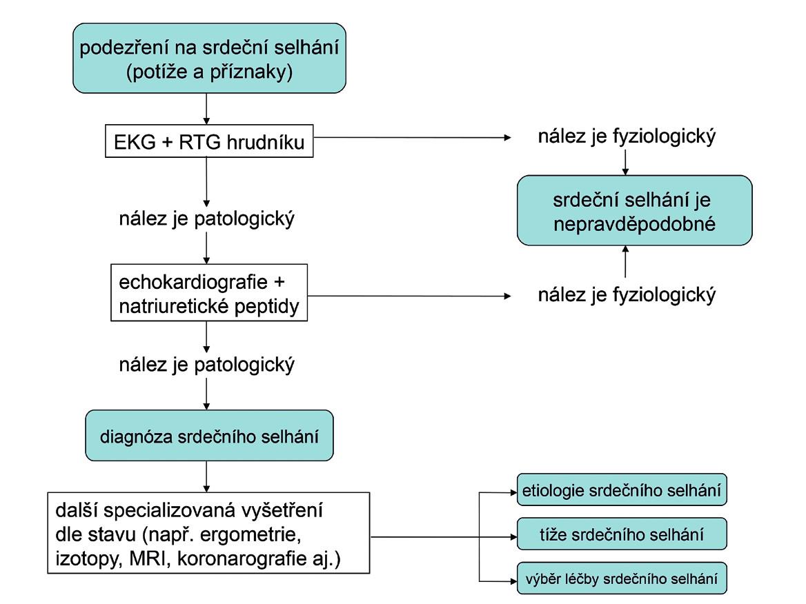 Algoritmus diagnostiky srdečního selhání  EKG – elektrokardiogram, MRI – zobrazení magnetickou rezonancí (z angl. magnetic resonance imaging), RTG – rentgenogram