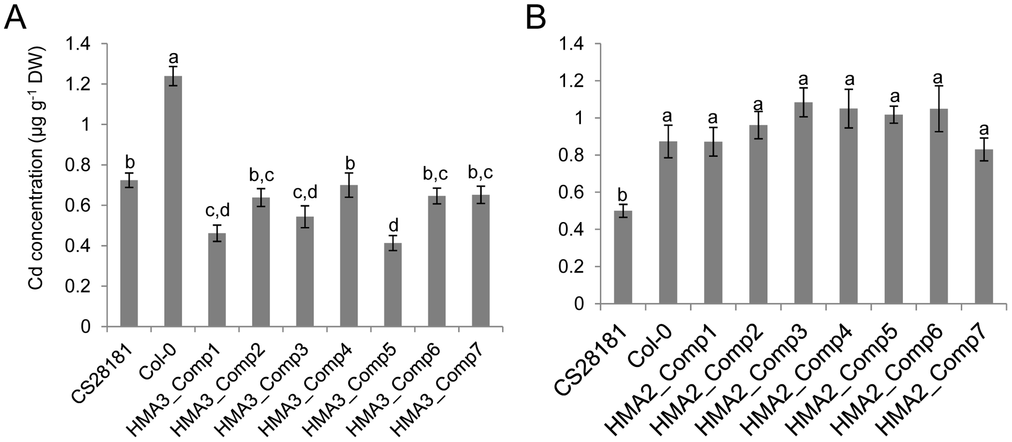 Transgenic complementation of the high leaf Cd phenotype of <i>A. thaliana</i> Col-0.