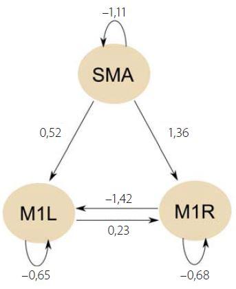 Schéma 1. Stanovený neuronální model.