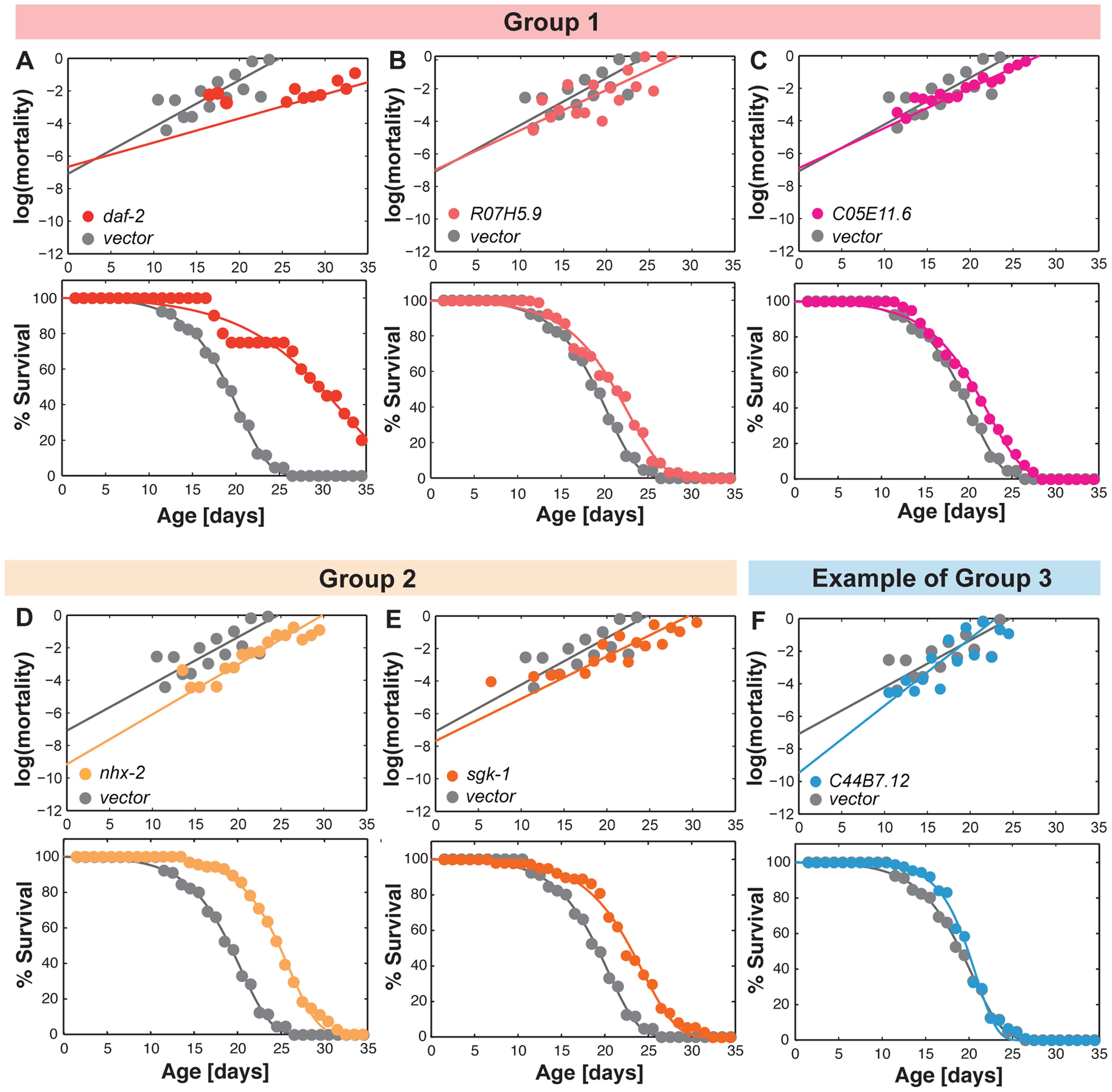 Gene inactivations that promote somatic longevity.