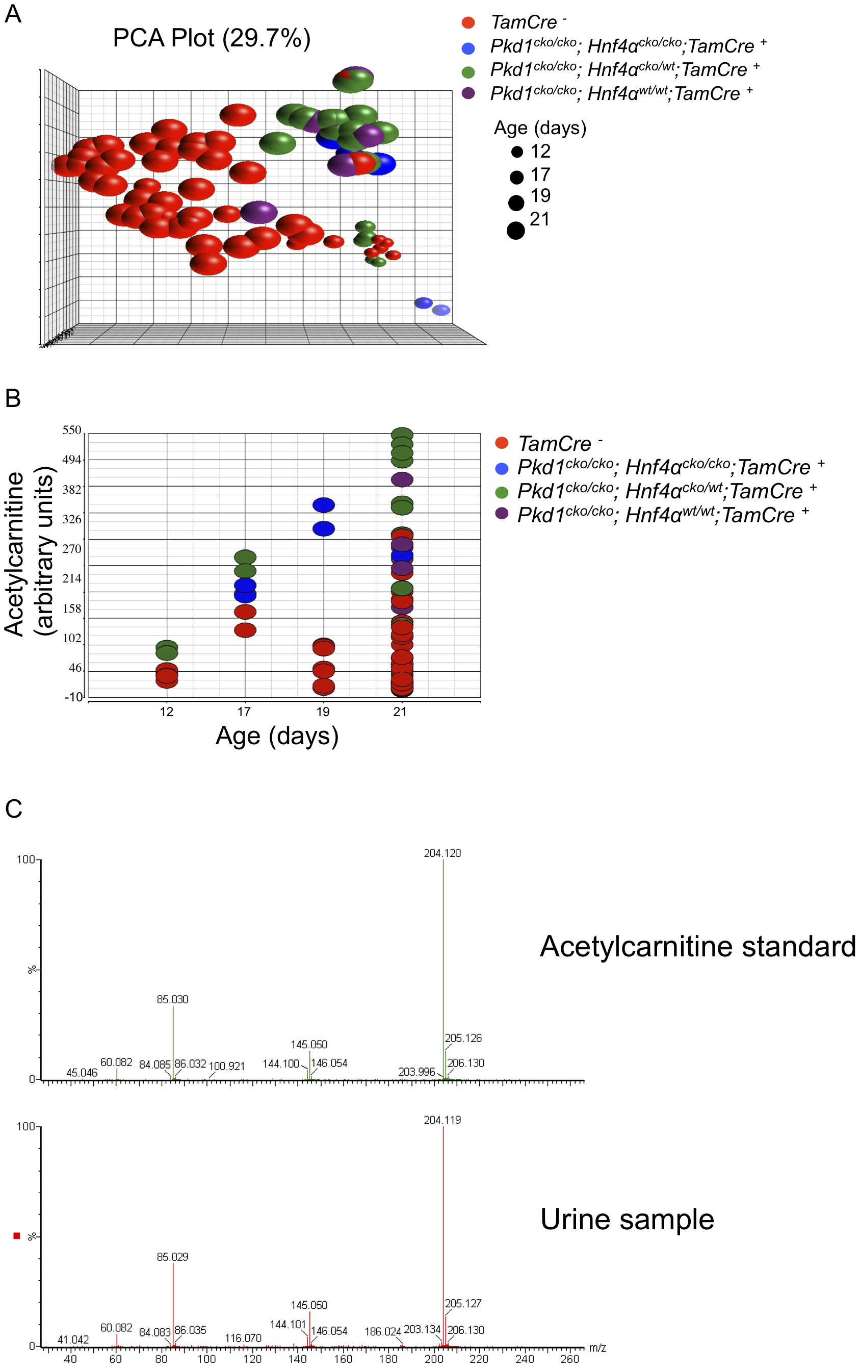 Urinary metabolomics shows distinct patterns in cystic versus control mice.