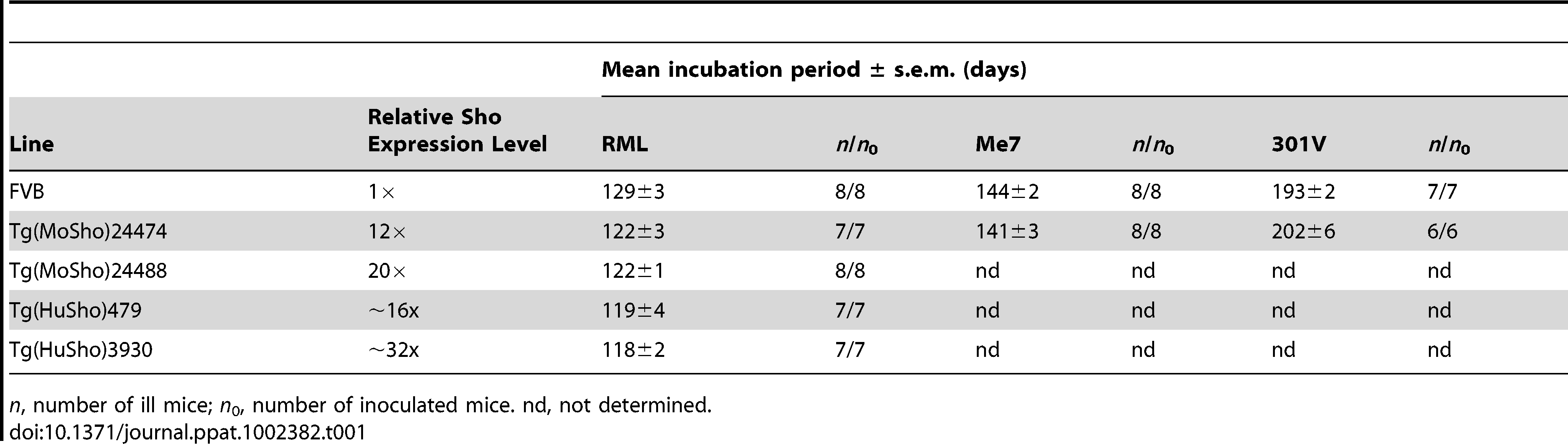 Incubation periods in Tg(Sho) mice following inoculation with different prion strains.