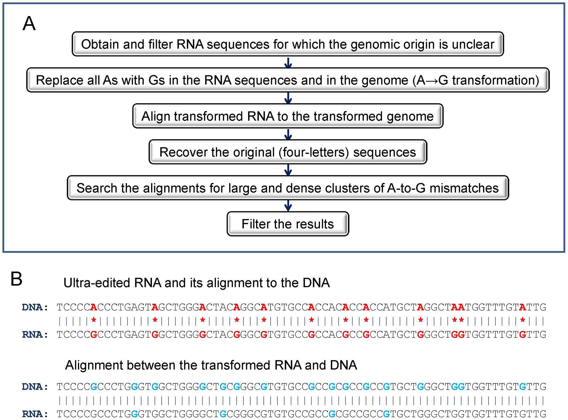 The computational procedure used to detect ultra-edited RNA.