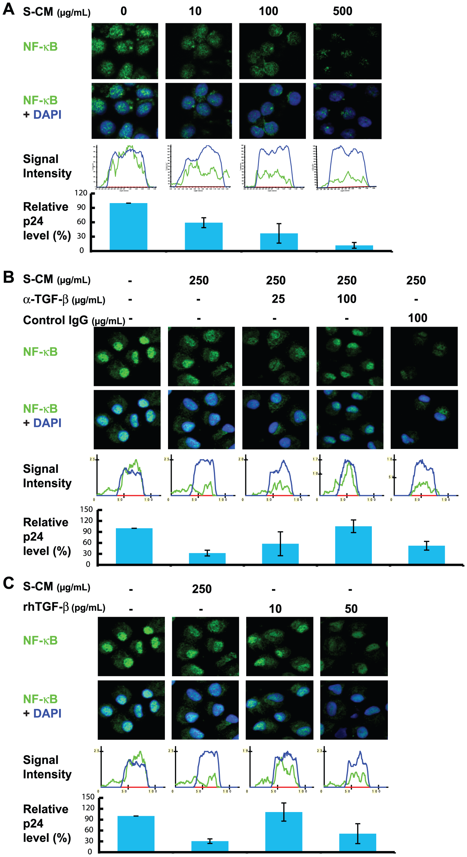 Down-regulation of NF-κB by S-CM correlates with down-regulation in the cells' ability to support HIV-1 replication.