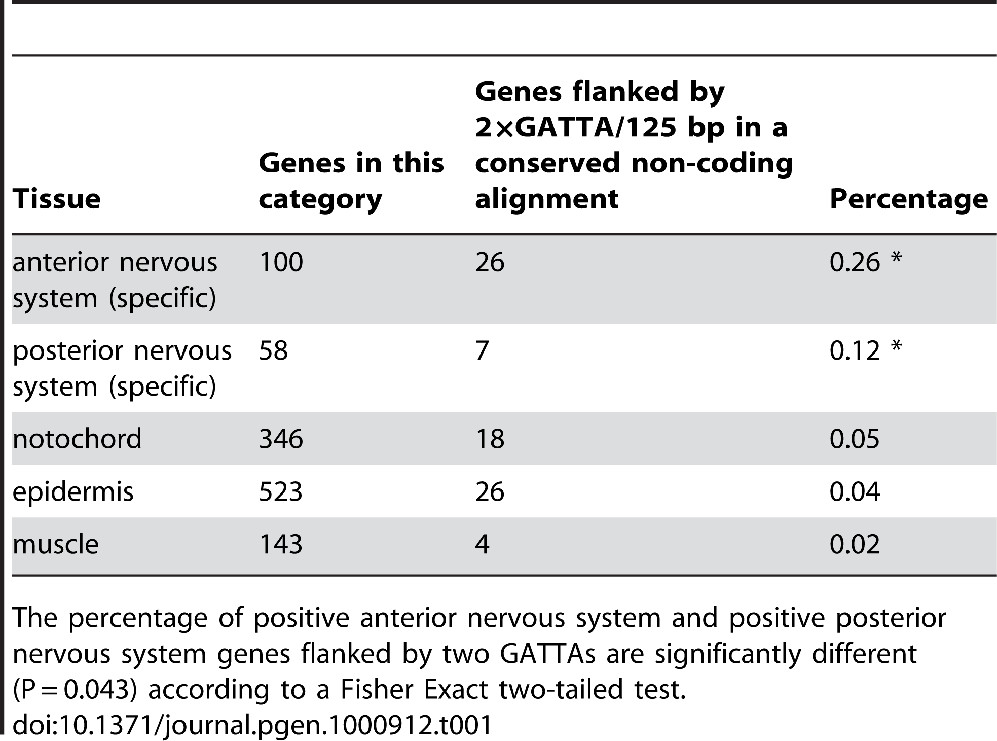 Antero-posterior distribution of enhancers with 2×GATTA tags.