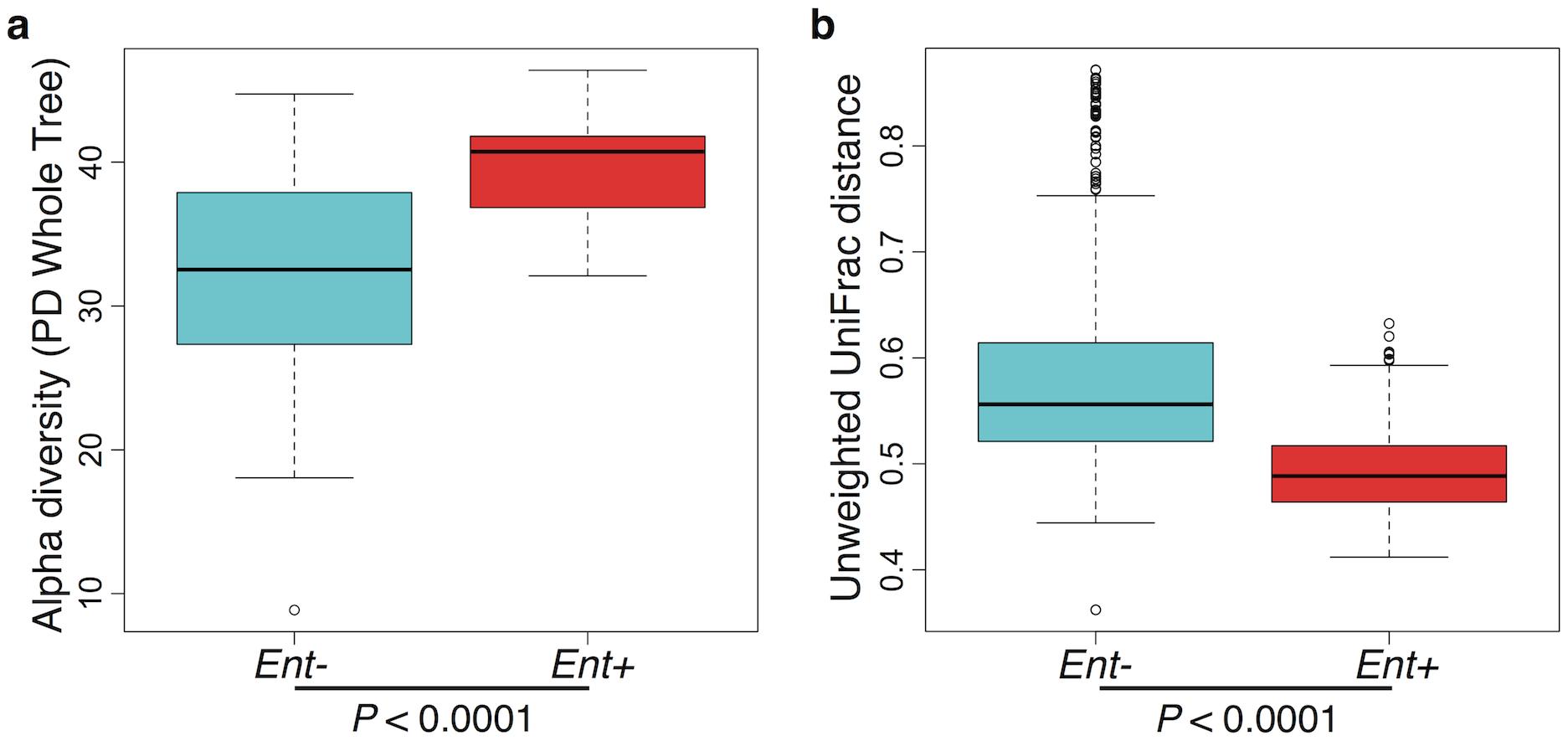 (a) Comparison of alpha diversity for <i>Entamoeba</i> negative (<i>Ent</i>-) and positive (<i>Ent</i>+) individuals using the phylogenetic distance whole tree metric.