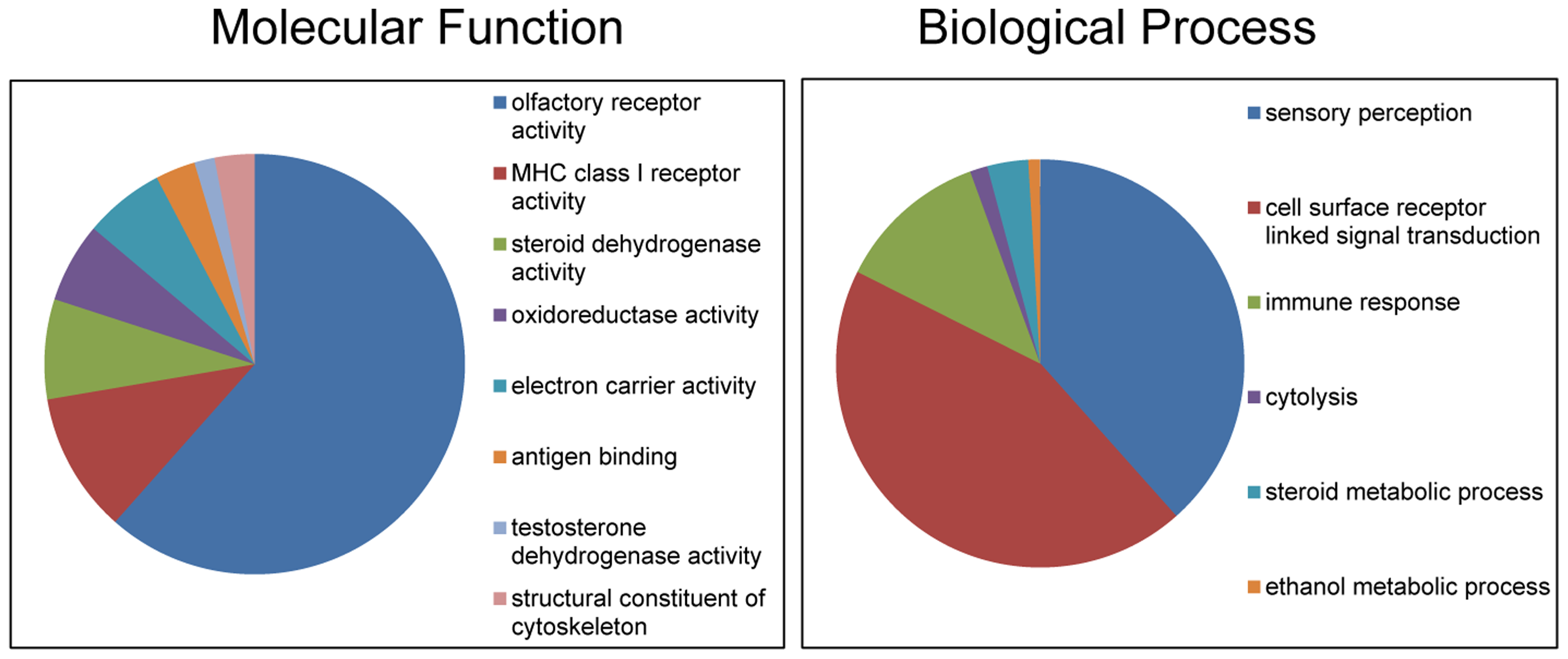 Gene Ontology classifications of copy number variable genes in horses.