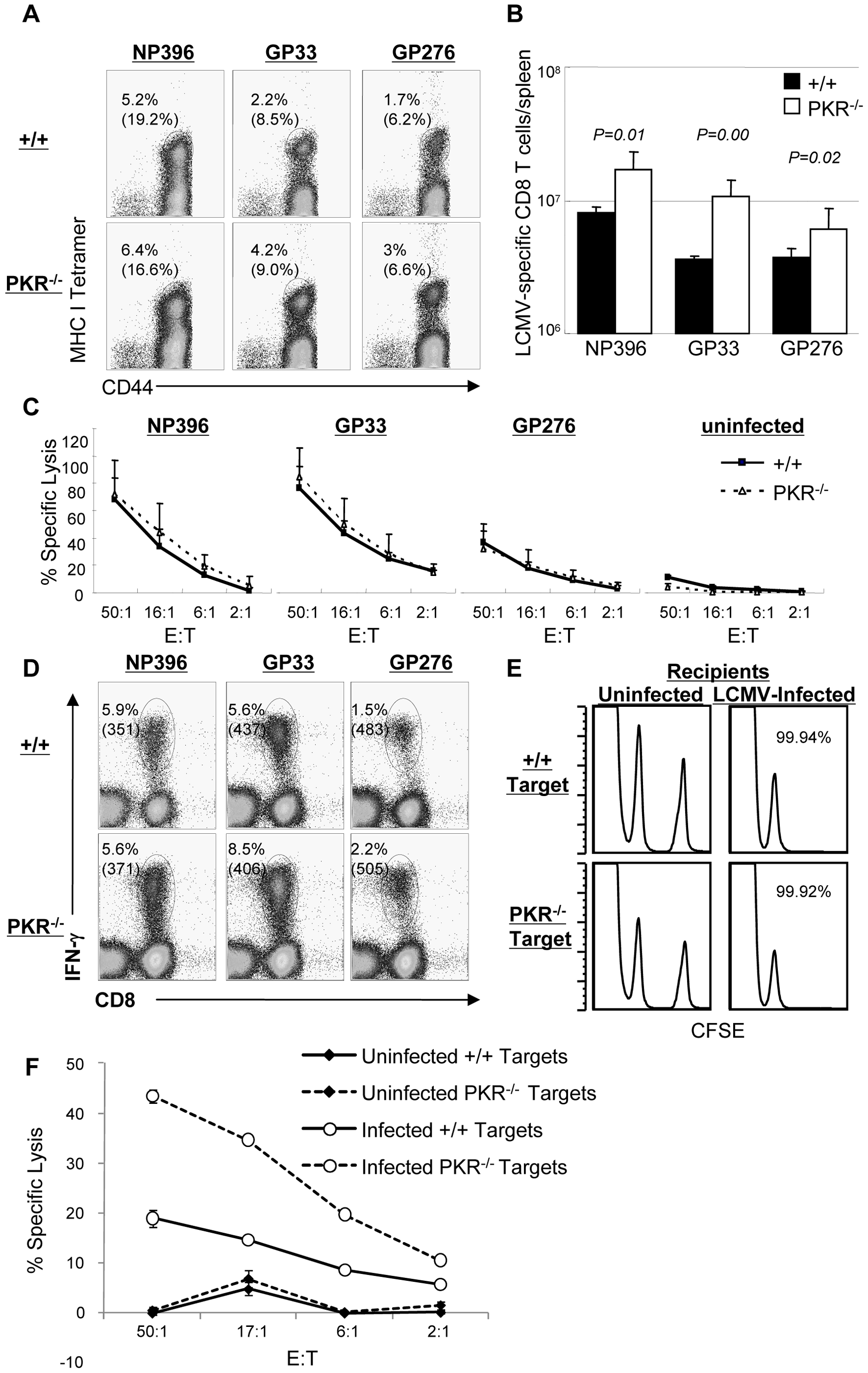 Primary CD8<sup>+</sup> T cell responses in PKR<sup>−/−</sup> mice.