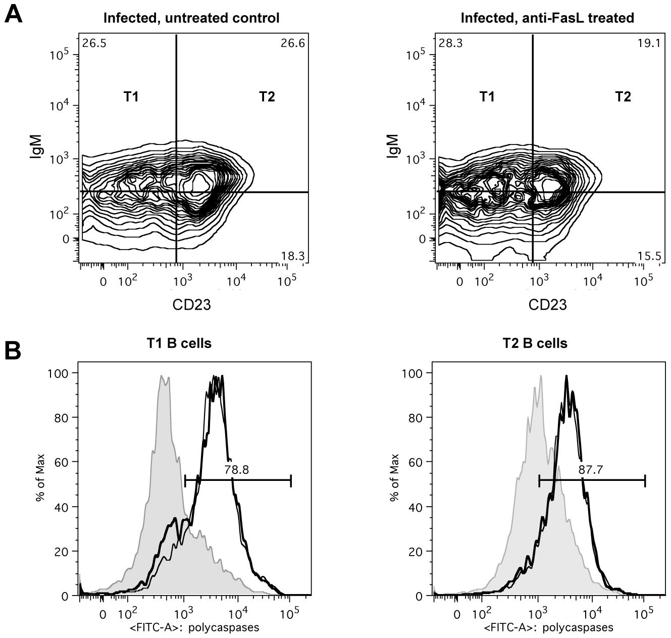 <i>In vivo</i> anti-FasL treatment of <i>T. brucei</i> infected mice.