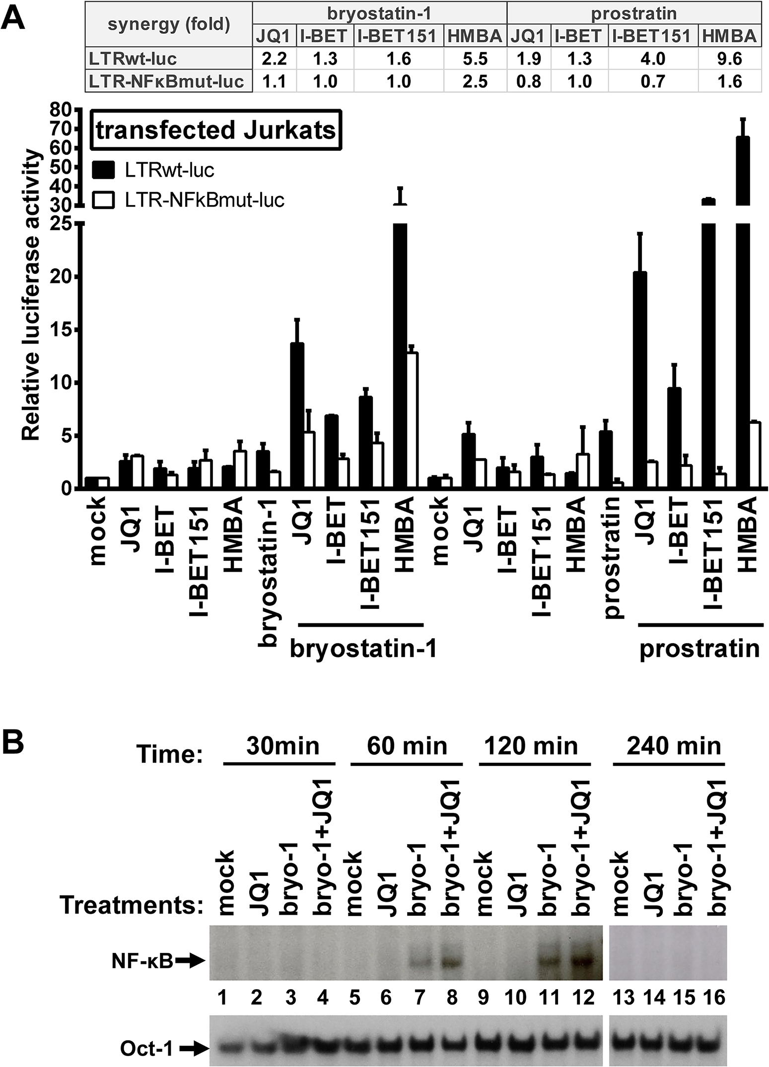 Synergistic inducibility of HIV-1 LTR promoter by PKC agonist+BETi/HMBA combinatory treatments depends on NF-κB.