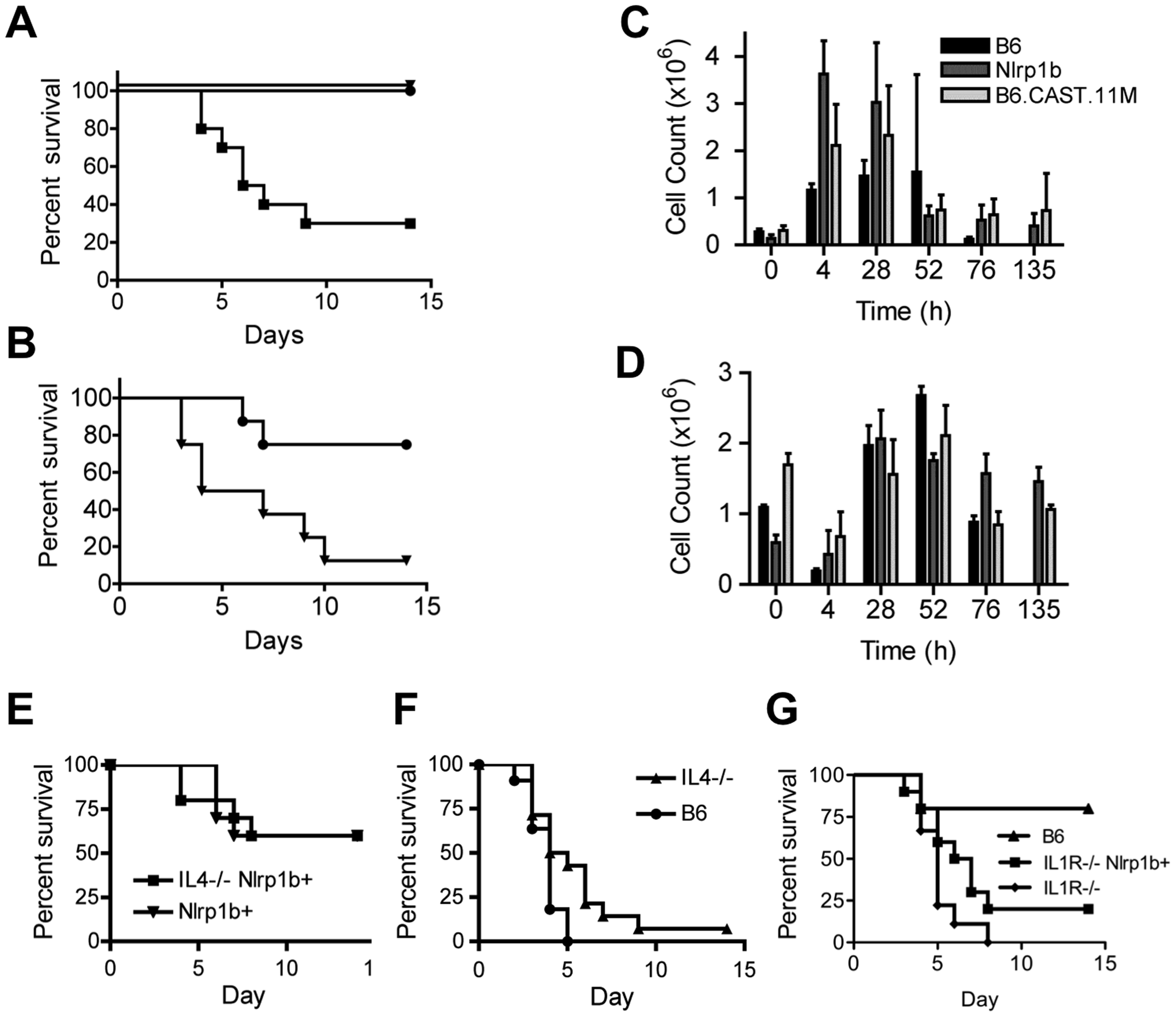 B6.CAST.11M mice display increased resistance to infection by <i>B. anthracis</i> Sterne.