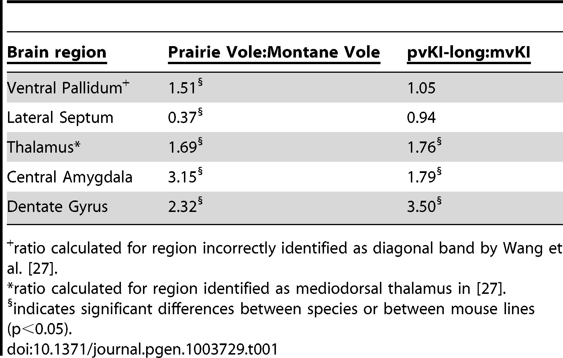 Comparison of V1aR binding ratios in prairie∶montane voles and pvKI-long∶mvKI mice.