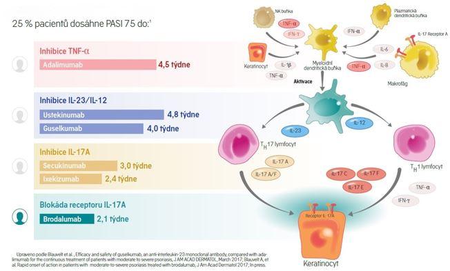 Rychlost nástupu účinku biologických léčiv (34, 35)