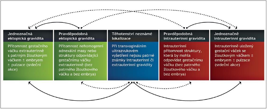 Schéma 1. Ultrazvuková klasifikace časného těhotenství u ženy s pozitivním těhotenským testem Pozn.: Během diagnostického postupu lze očekávat, že se nález pravděpodobného ektopického nebo pravděpodobného intrauterinního těhotenství a těhotenství neznámé lokalizace postupně změní na nález jednoznačné intrauterinní, či ektopické gravidity (plné čáry). Méně pravděpodobný, ale možný vývoj těhotenství je označen přerušovanými čarami [3].