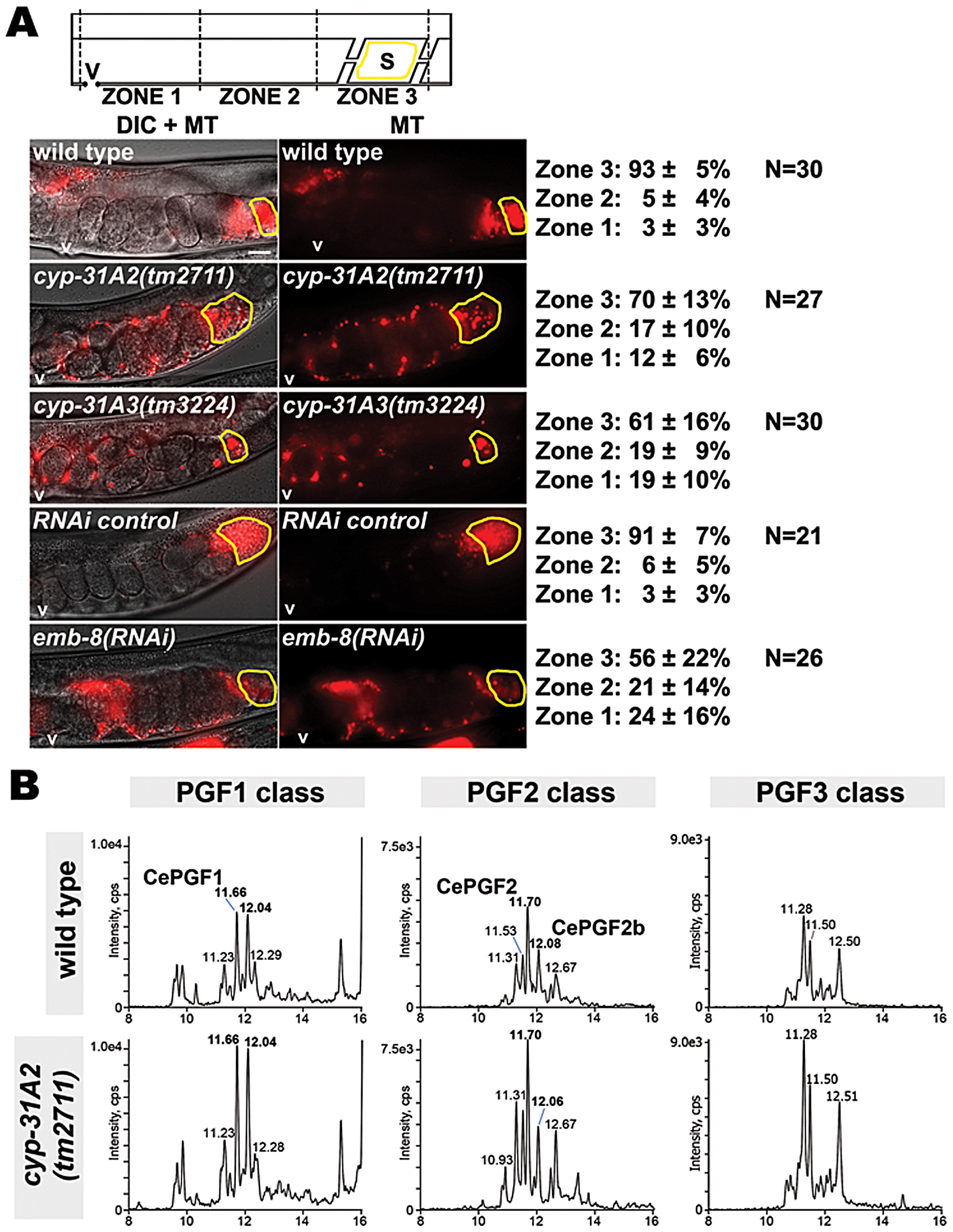 Effect of cytochrome P450 enzymes on sperm guidance and prostaglandin metabolism.