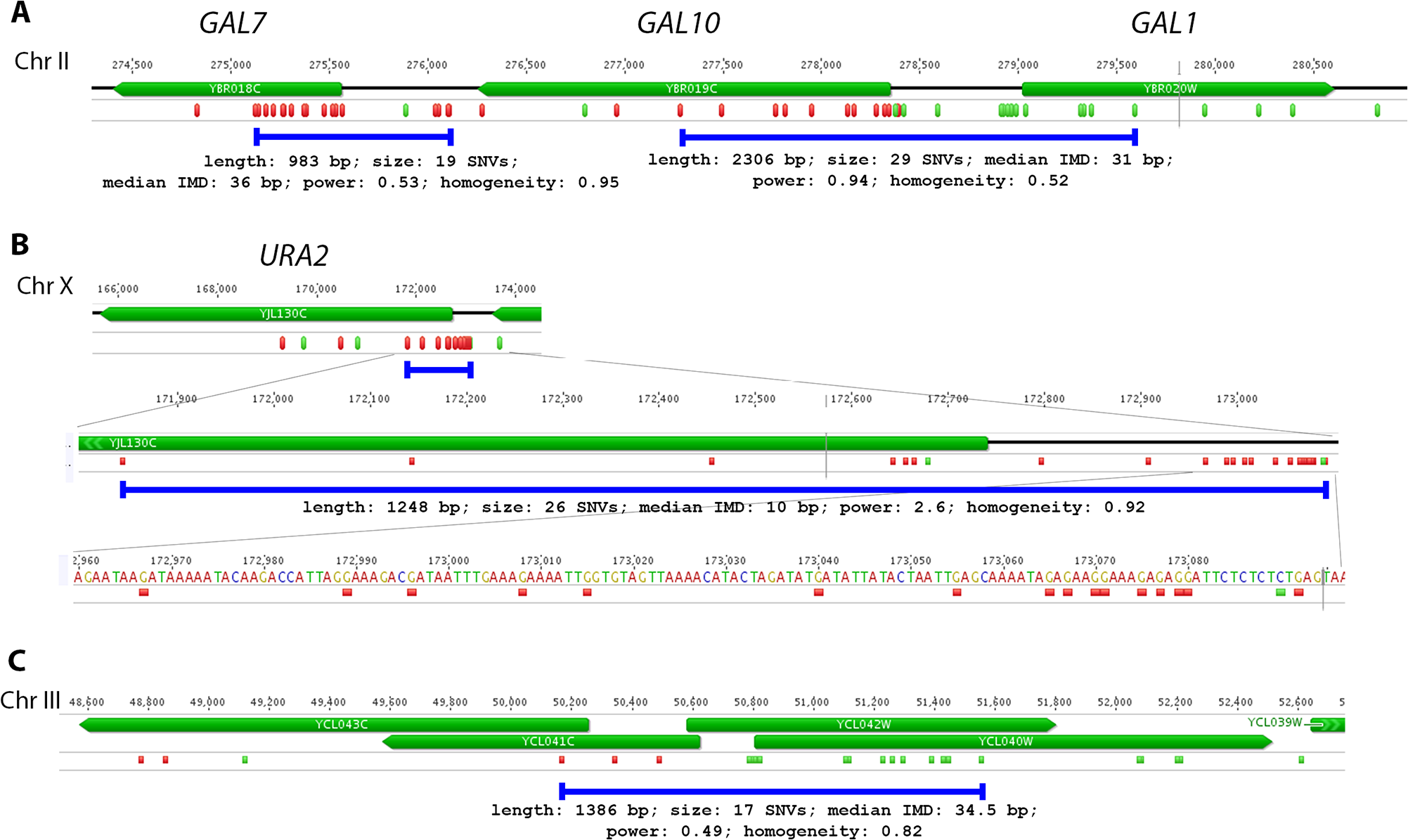 Examples of PmCDA1-induced transcription-associated mutation clusters.
