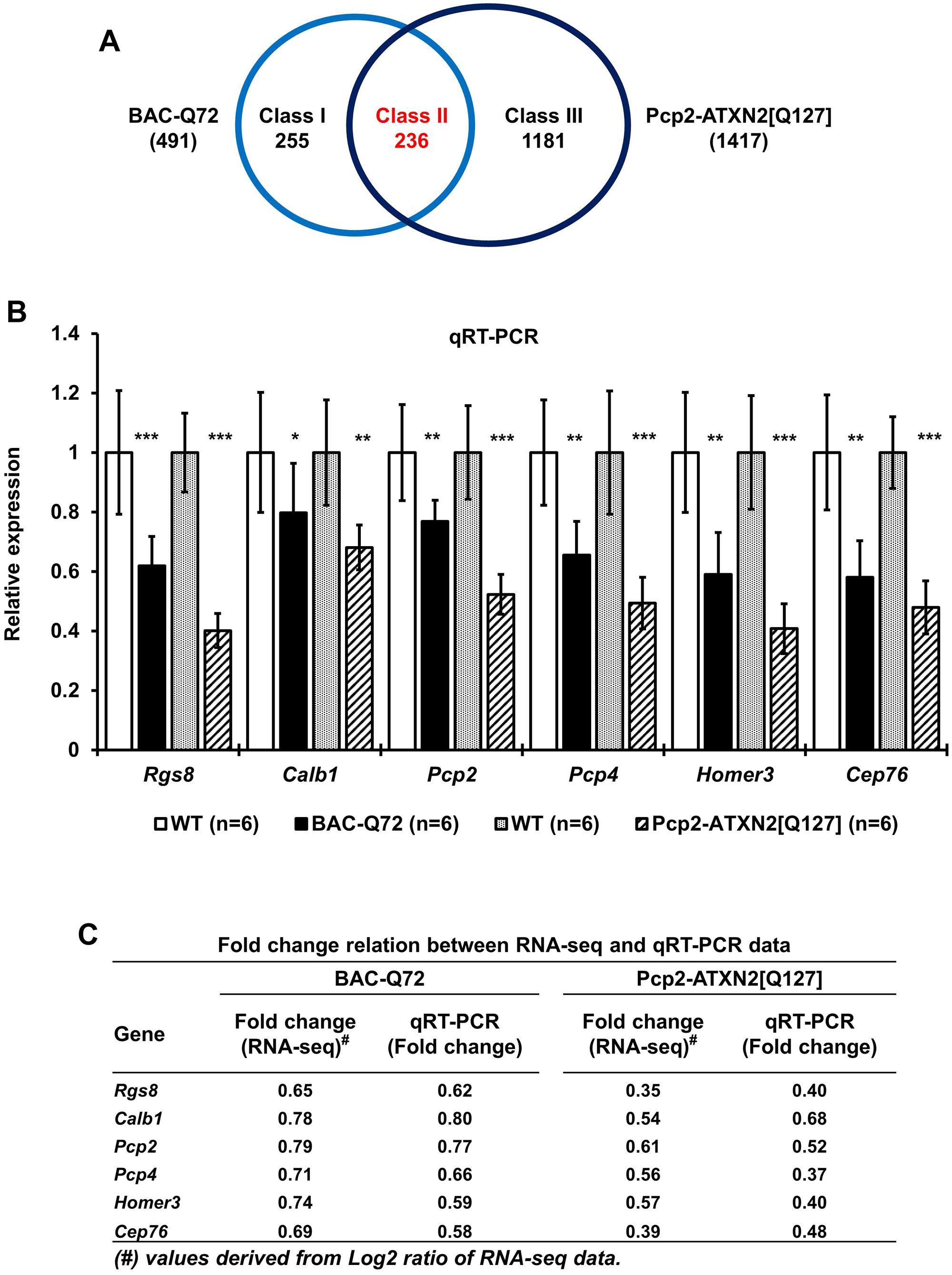 Comparison of transcriptome changes in BAC-Q72 and Pcp2-ATXN2[Q127] mice.