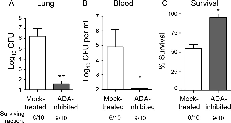 Inhibition of adenosine breakdown promotes resistance to <i>S</i>. <i>pneumoniae</i> lung challenge.