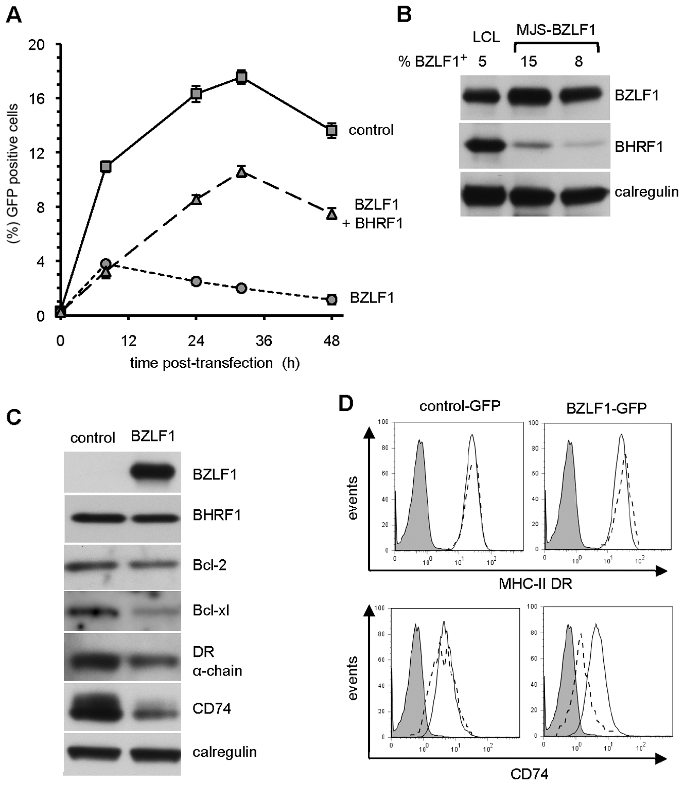 BHRF1 counteracts BZLF1 toxicity.