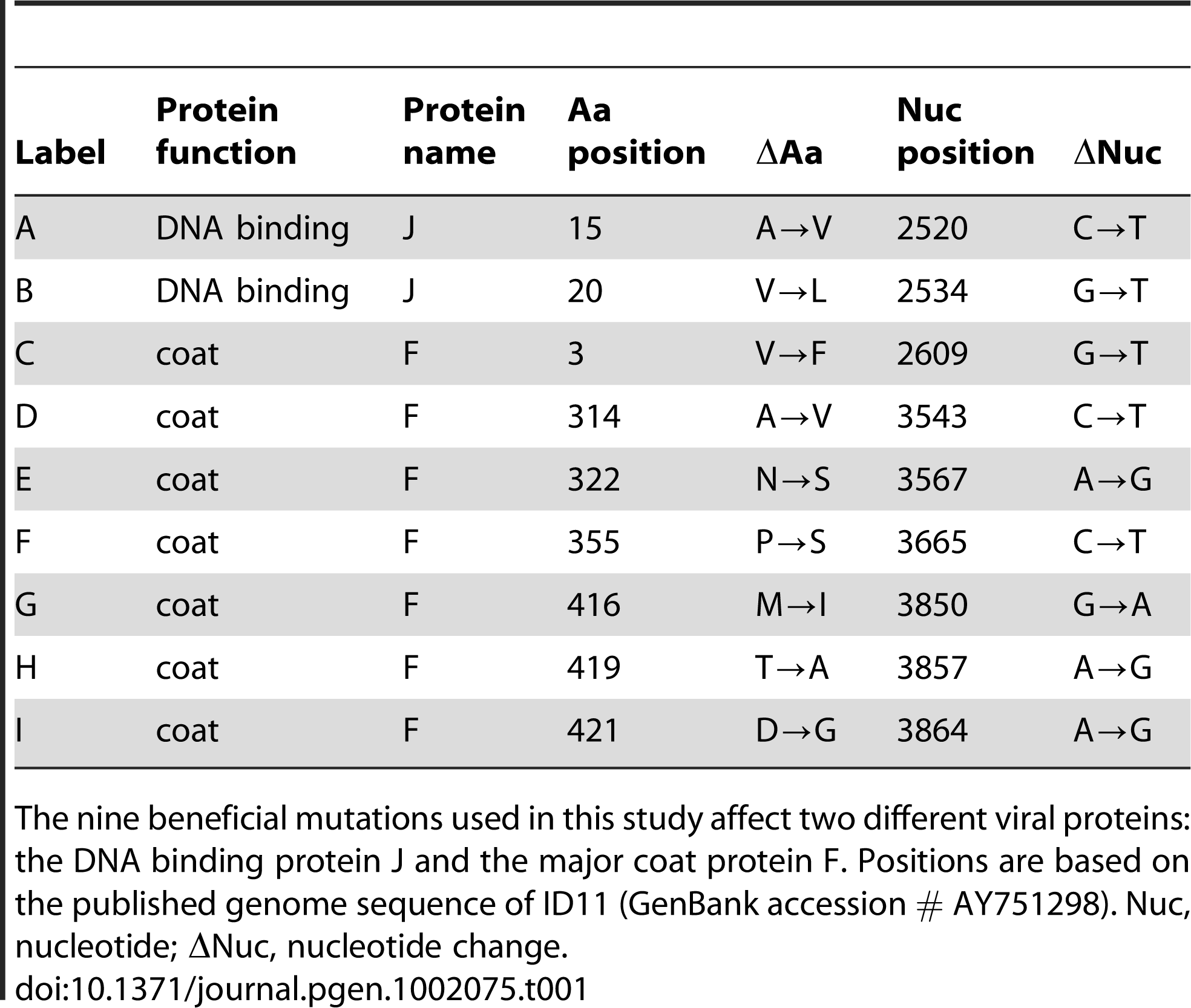 Nine mutations beneficial to the ssDNA bacteriophage ID11.