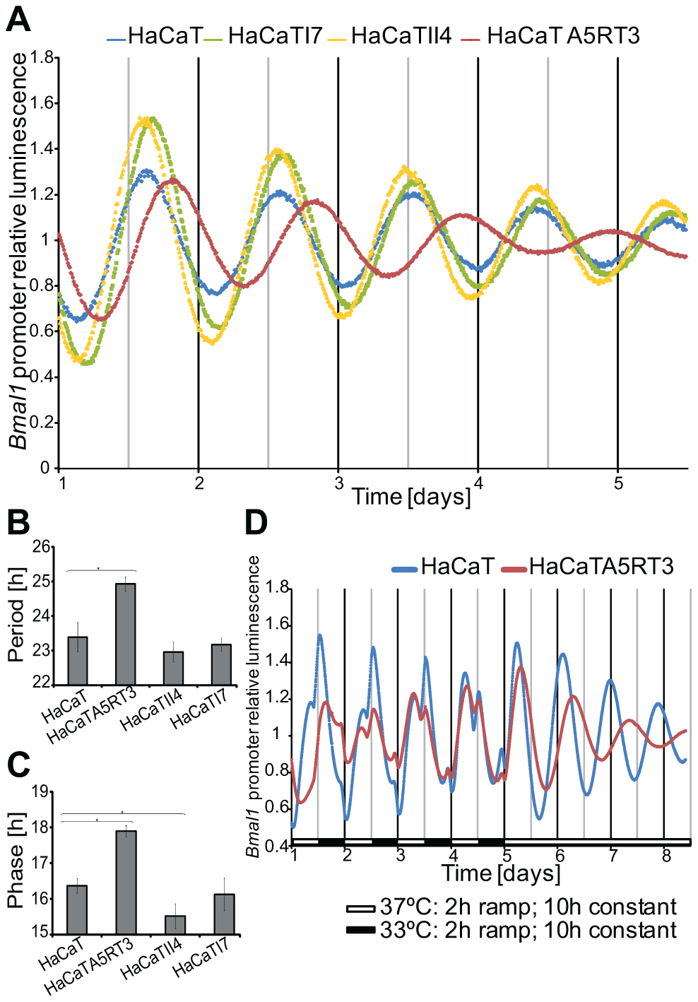 Differential circadian phenotypes of human keratinocytes and their Ras-transformed variants.