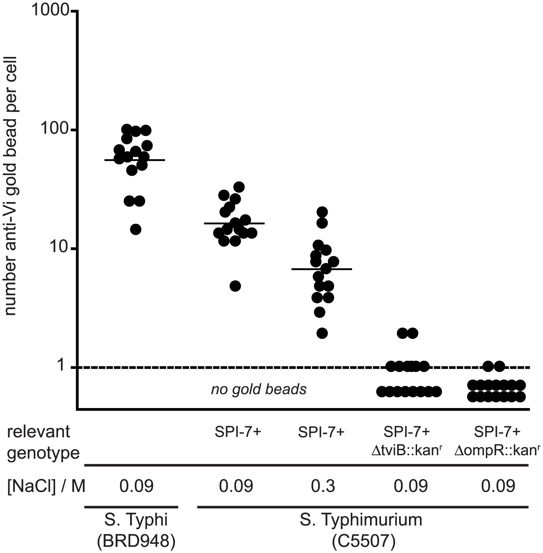 Enumeration of anti-Vi antibody immuno-gold labelling of <i>S.</i> Typhi and <i>S.</i> Typhimurium.