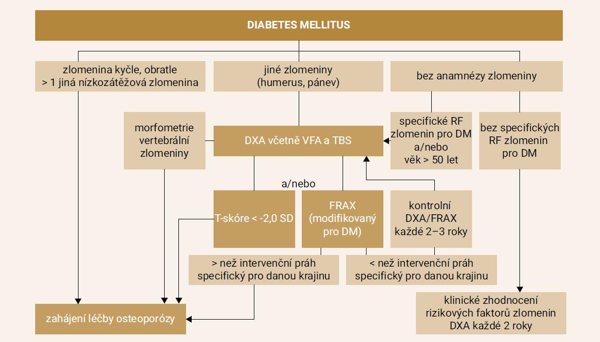 Schéma. Algoritmus pro zahájení léčby osteoporózy u pacientů s DM2T. Upraveno podle [45]