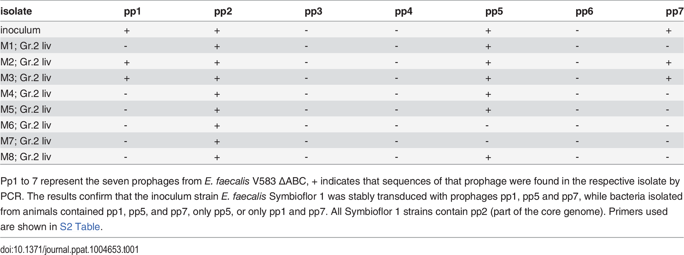 PCR results validating the presence or absence of phage sequences in the original <i>E. faecalis</i> Symbioflor 1, polylysogenic Symbioflor 1, and bacterial isolates from animals infected with polylysogenic Symbioflor 1.