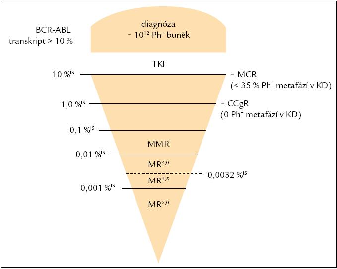 Schematické znázornění hladin BCR-ABL trankriptů v mezinárodním měřítku. CCgR – kompletní cytogenetická remise, KD – kostní dřeň, MCR – velká cytogenetická odpověď, MMR – velká molekulární odpověď, MR – molekulární odpověď, TKI – inhibitory tyrozinových kináz.