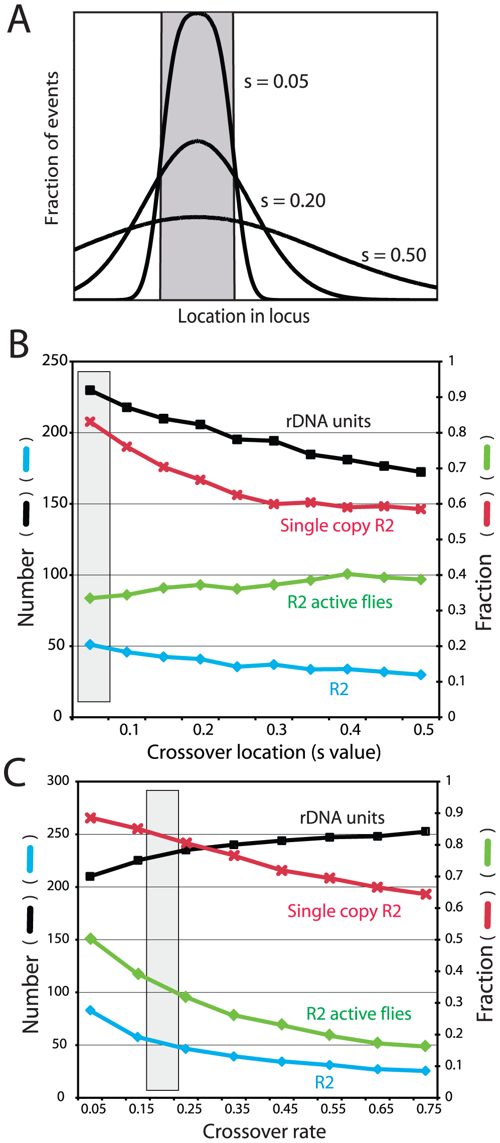 Effects of varying crossover location and crossover frequency on the properties of the simulated rDNA loci.